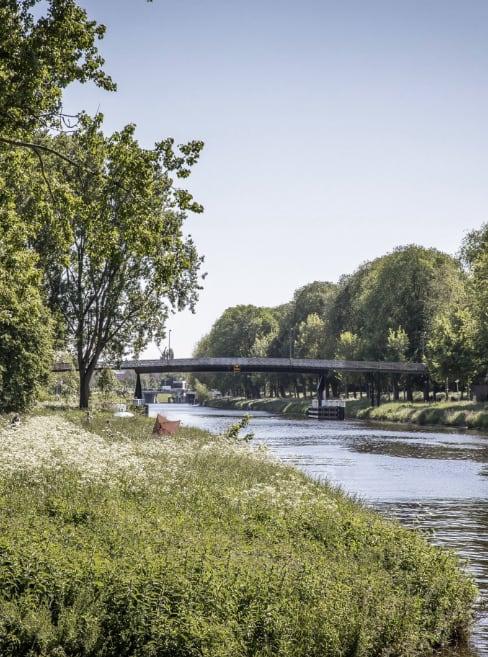 Herinrichting Noorderpark